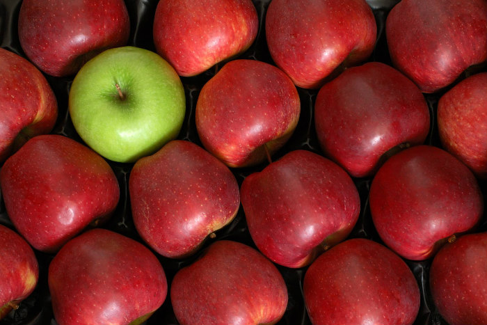 One green apple among a crate of red apples